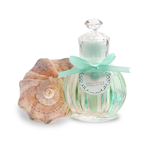 Coastal Beauty Perfume